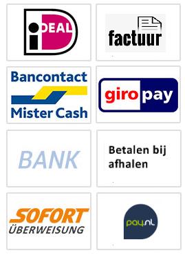 Paysafe Online Bestellen